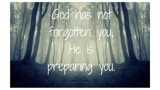 God has not forgotten you; He is preparing you.