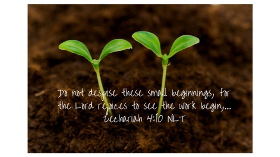 Do not despise these small beginnings, for the Lord rejoices to see the work begin,
