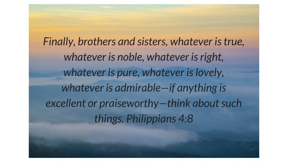 Finally, brothers and sisters, whatever is true, whatever is noble, whatever is right, whatever is pure, whatever is lovely, whatever is admirable—if anything is excellent or praisewor